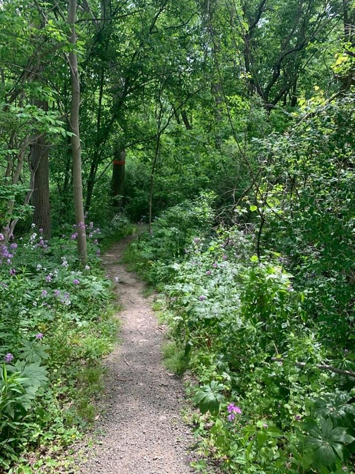 Trail Maps: Biking & Hiking